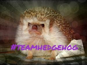 teamhedgehog